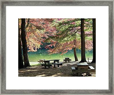Fall Picnic Framed Print by Janice Drew