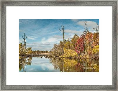 Framed Print featuring the photograph Fall Pond by Debbie Green
