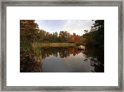 Fall Pond Framed Print by Skip Willits
