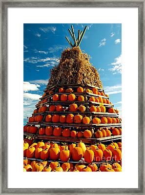 Fall Pumpkins Framed Print by Kathleen Struckle