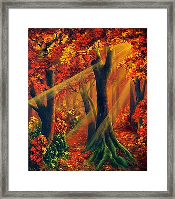 Fall Rays Framed Print