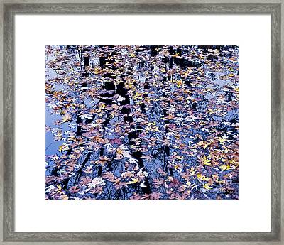 Framed Print featuring the photograph Fall Reflections by Alan L Graham