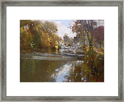 Fall Reflections At North Tonawanda Canal Framed Print by Ylli Haruni