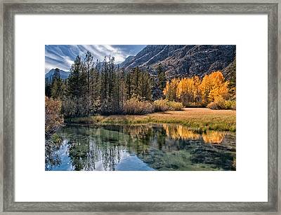 Fall Reflections Framed Print by Cat Connor