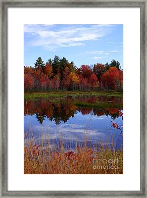 Fall Reflections Framed Print by Kerri Mortenson