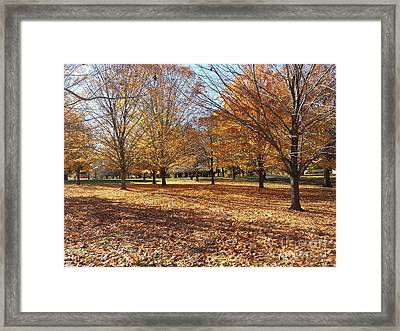 Fall Retreat Framed Print