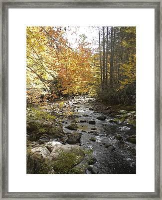 Fall River Scene Damascus Va Framed Print
