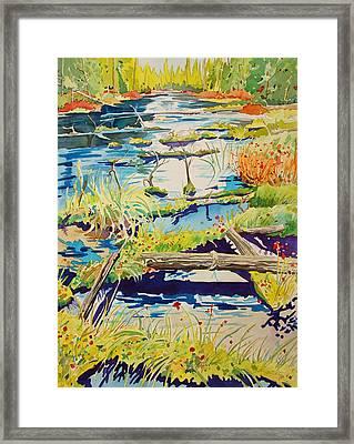 Fall River Scene Framed Print