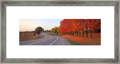 Fall Road Il Framed Print by Panoramic Images