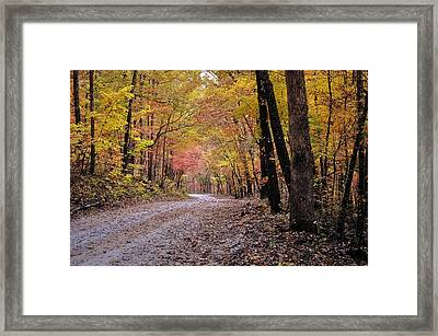 Fall Road Framed Print by Marty Koch