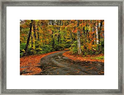 Framed Print featuring the photograph Fall Road To Glory by Kenny Francis