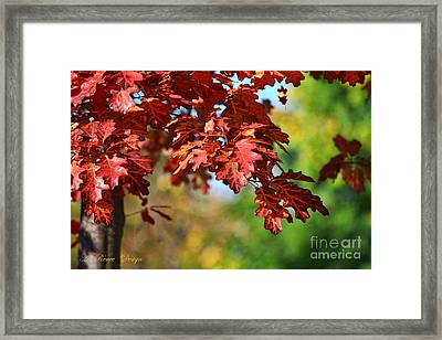Fall Royalty Framed Print