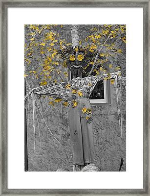 Fall Scarecrow Framed Print