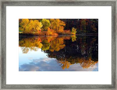 Fall Scene Framed Print by Olivier Le Queinec