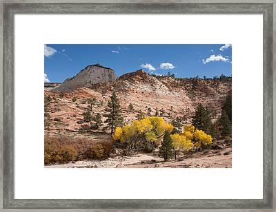 Fall Season At Zion National Park Framed Print by John M Bailey