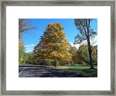 Framed Print featuring the photograph Fall Season by Eric Switzer