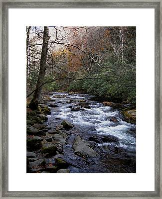 Fall Seclusion Framed Print by Skip Willits