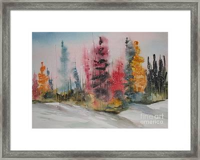 Fall Snow Framed Print by Mohamed Hirji