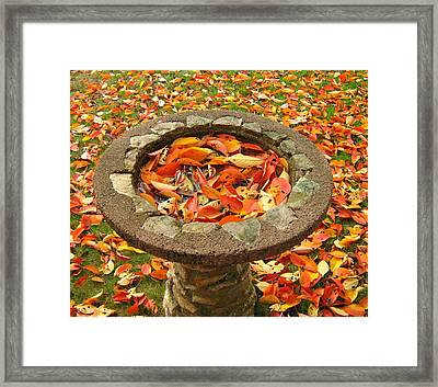 Fall Splendor Framed Print by Bruce Carpenter
