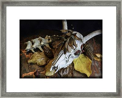 Fall Still Life Framed Print