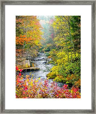 Fall Stream In New Hampshire Framed Print