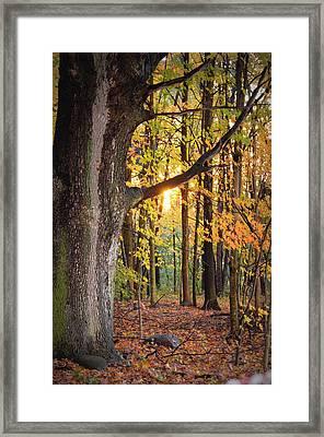 Fall Sunset Framed Print by Jennifer  King