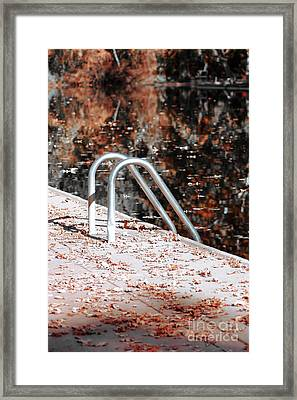 Fall Swim Framed Print by David Taylor