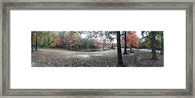 Fall Time Framed Print