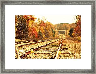 Fall Tracks Framed Print by Stephanie Grooms