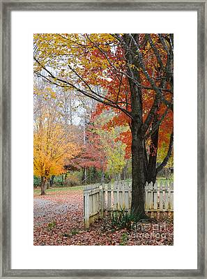 Fall Tranquility Framed Print by Debbie Green