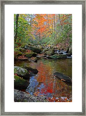 Fall Tranquility On The Middle Saluda River Framed Print by Mary Anne Baker