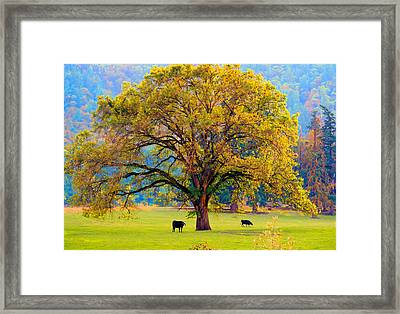 Fall Tree With Two Cows Framed Print