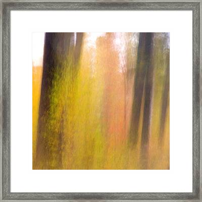 Fall Trees And Leaves With Motion Blur Framed Print by Dennis Fast / Vwpics
