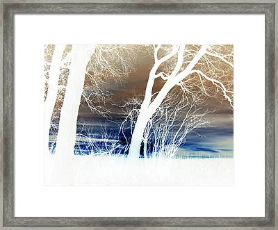 Framed Print featuring the photograph Fall Trees by Larry Campbell