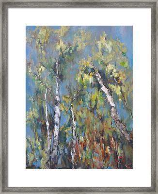 Fall Trees Framed Print by Lindsay Frost