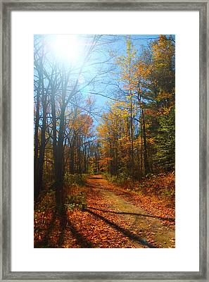 Fall Vermont Road Framed Print