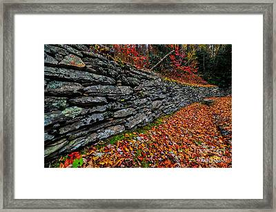 Fall Wall Framed Print