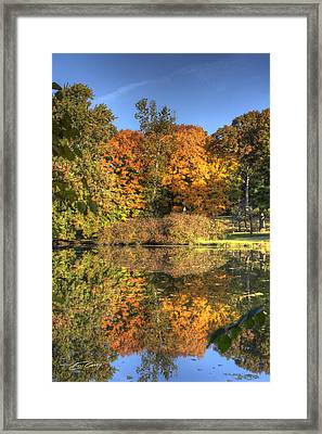 Fall - Which Side Is Up Framed Print by Ed Cilley