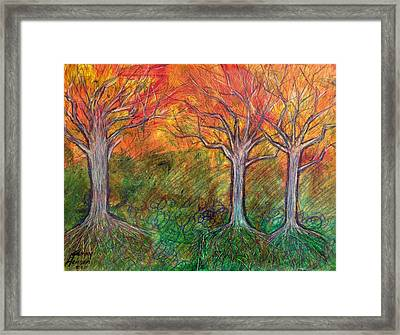 Fall Winter Spring Framed Print by Kenny Henson