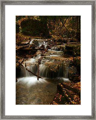 Fall With Grace Framed Print by Jeremy Rhoades