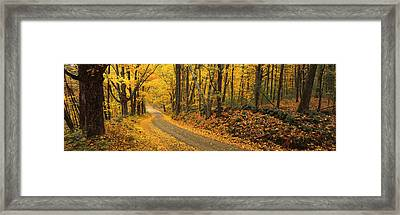 Fall Woods Monadnock Nh Usa Framed Print by Panoramic Images