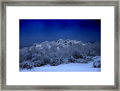 Fallen Angel Of Winter Framed Print