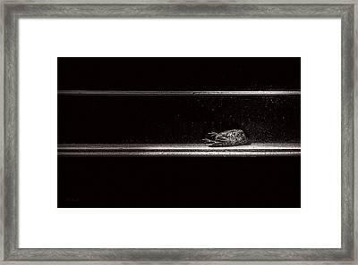 Fallen Framed Print by Bob Orsillo