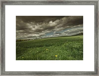 Fallen Framed Print by Chris Fletcher