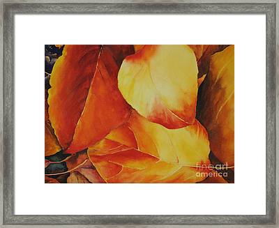 Fallen Colors Framed Print