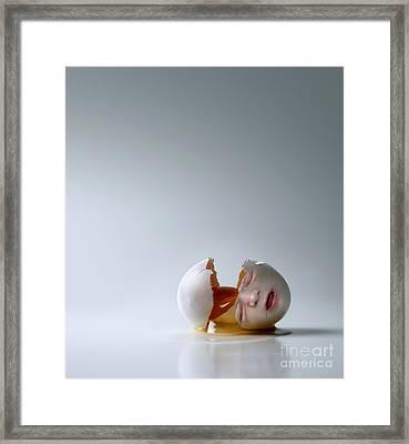 Fallen Egg Framed Print by Diane Diederich