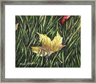 Fallen From Grace Framed Print