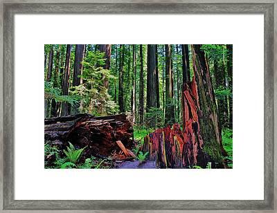 Fallen Giant Framed Print