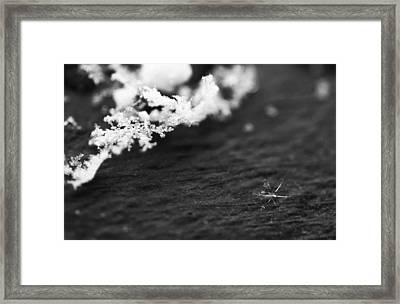 Fallen Star Framed Print by Rona Black