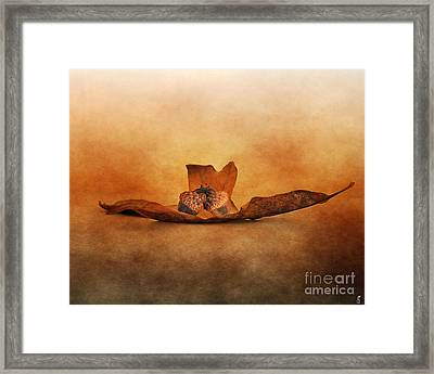 Fallen Together Framed Print by Jai Johnson